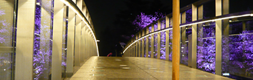 LED環境事業